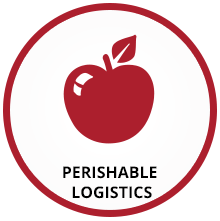 International Freight Forwarding Company - Freight Systems
